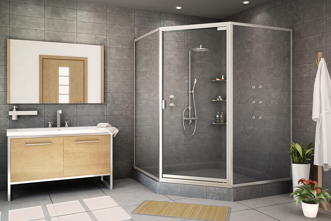 Bathroom standard shower door